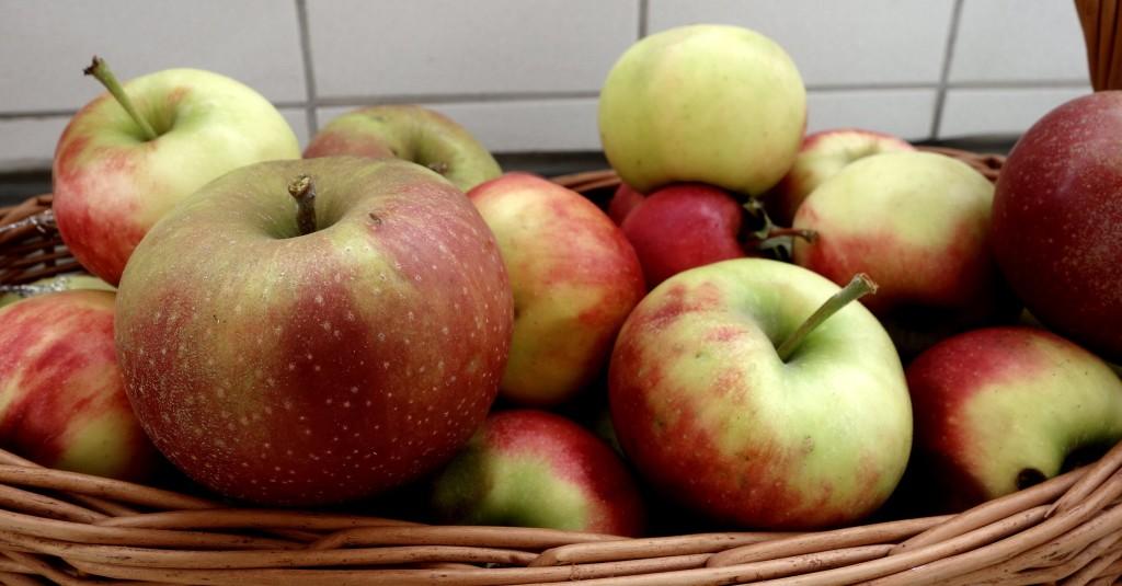 apple2sm
